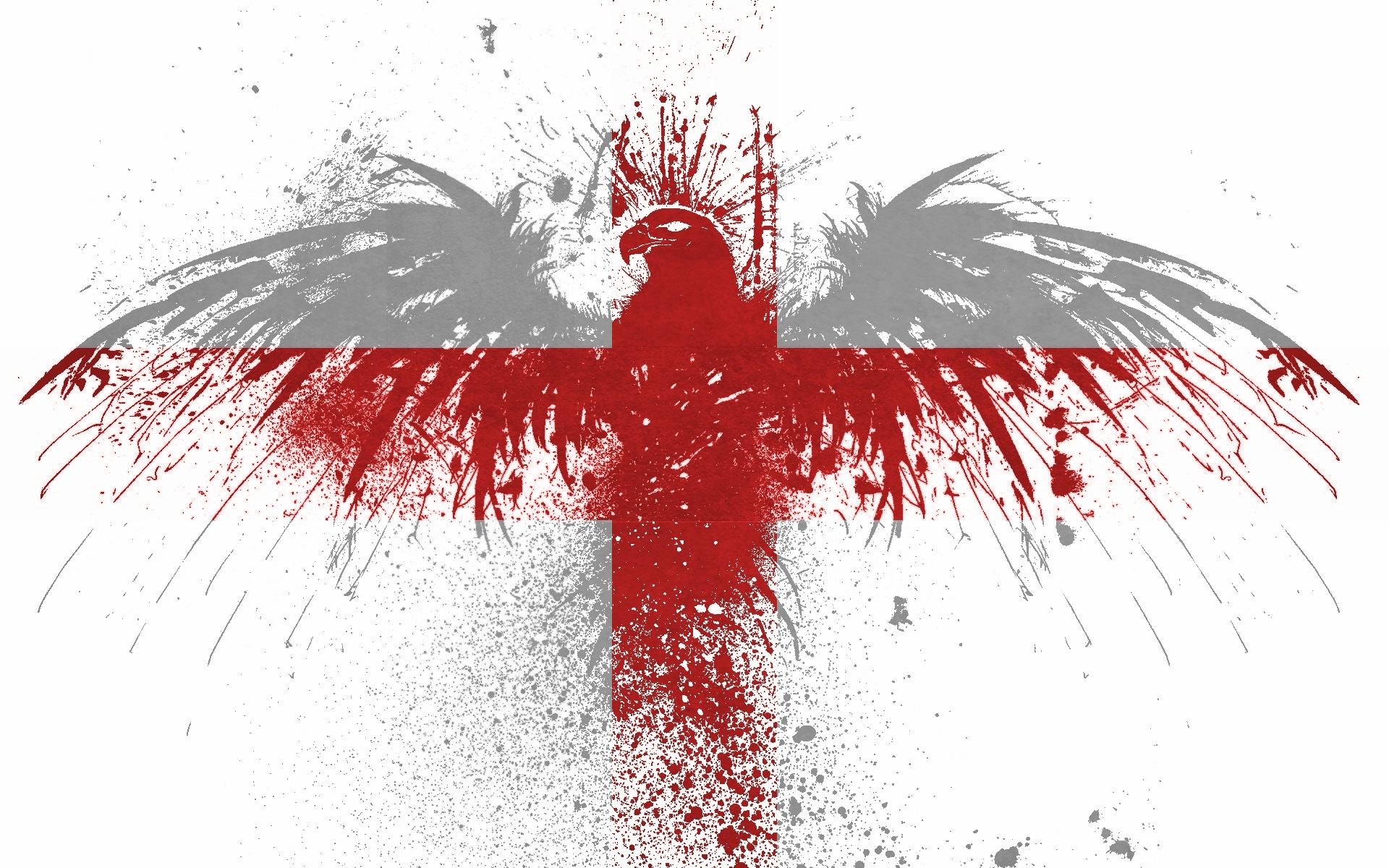 England paint hawk World HD Wallpaper