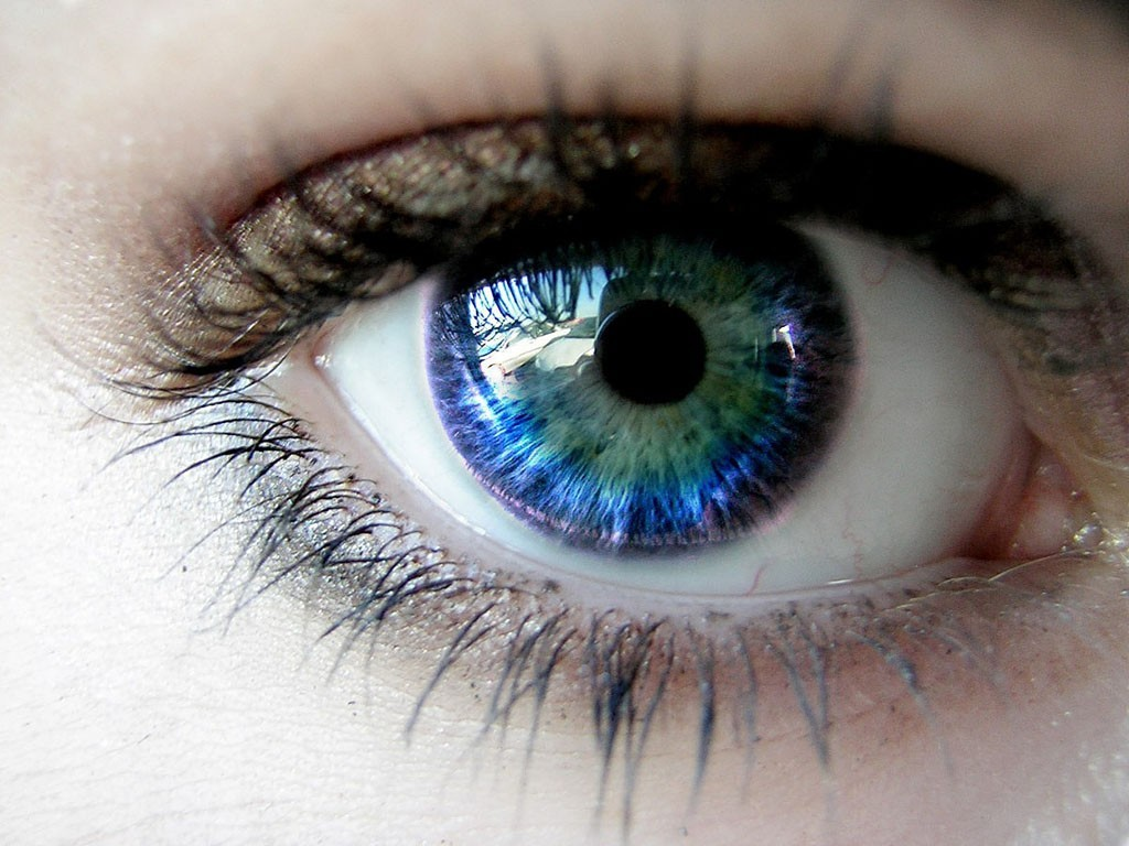 eyes blue eyes HD Wallpaper