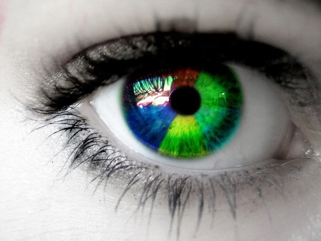 eyes multicolor eye HD Wallpaper
