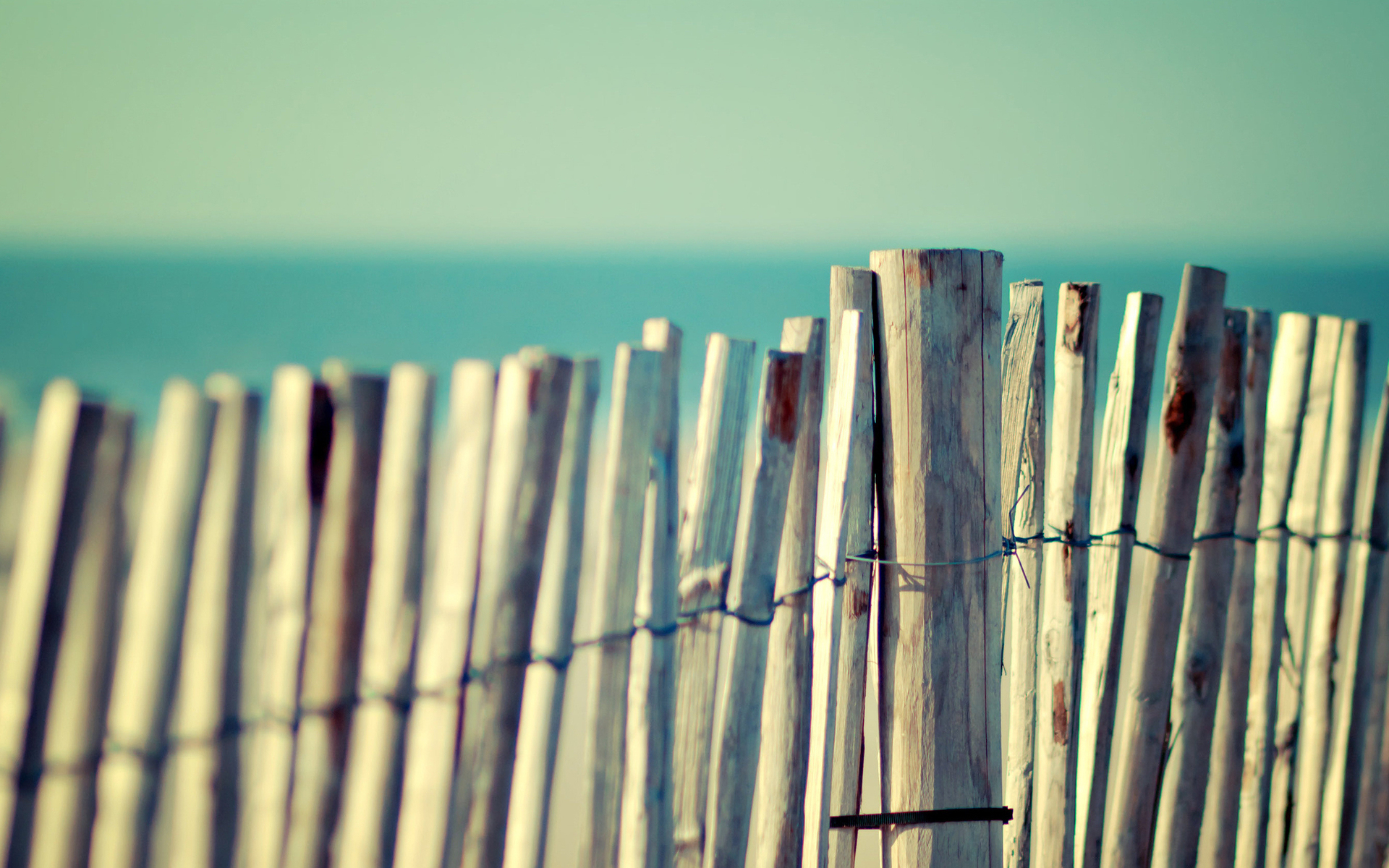 fences macro picket fence HD Wallpaper