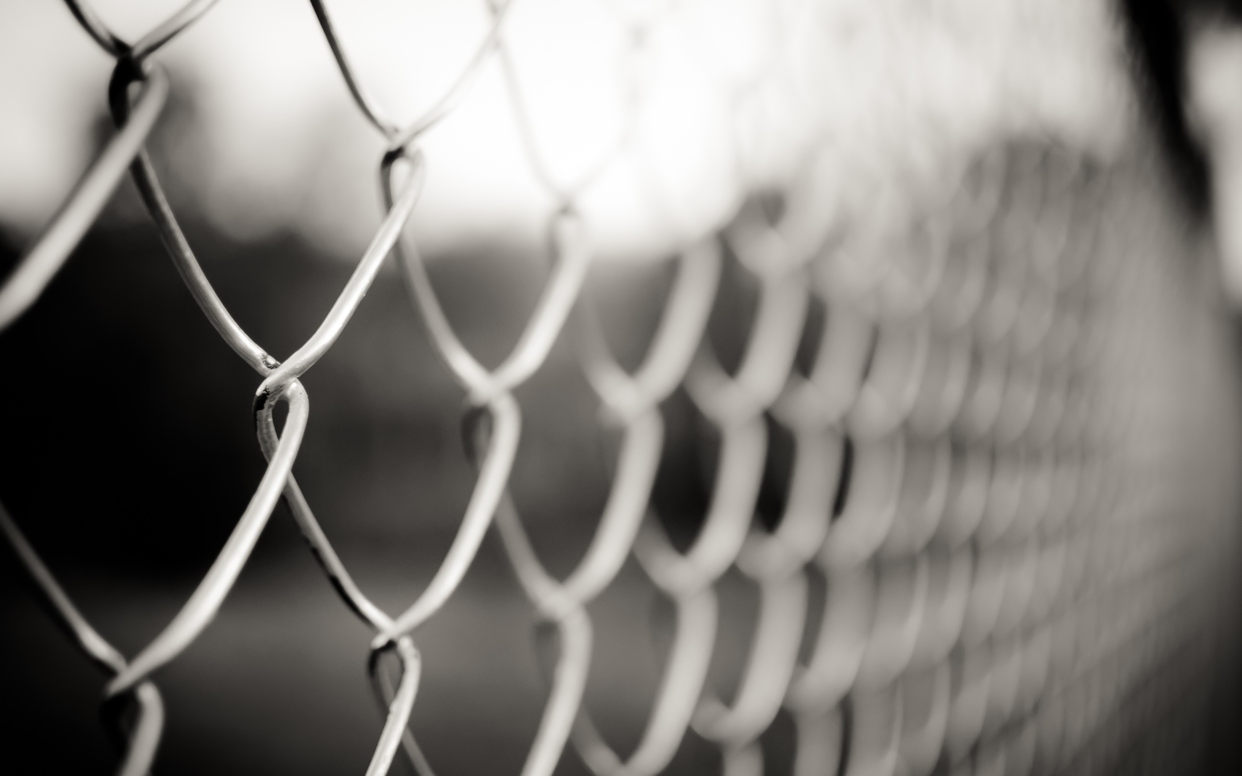 fences monochrome Chain Link HD Wallpaper