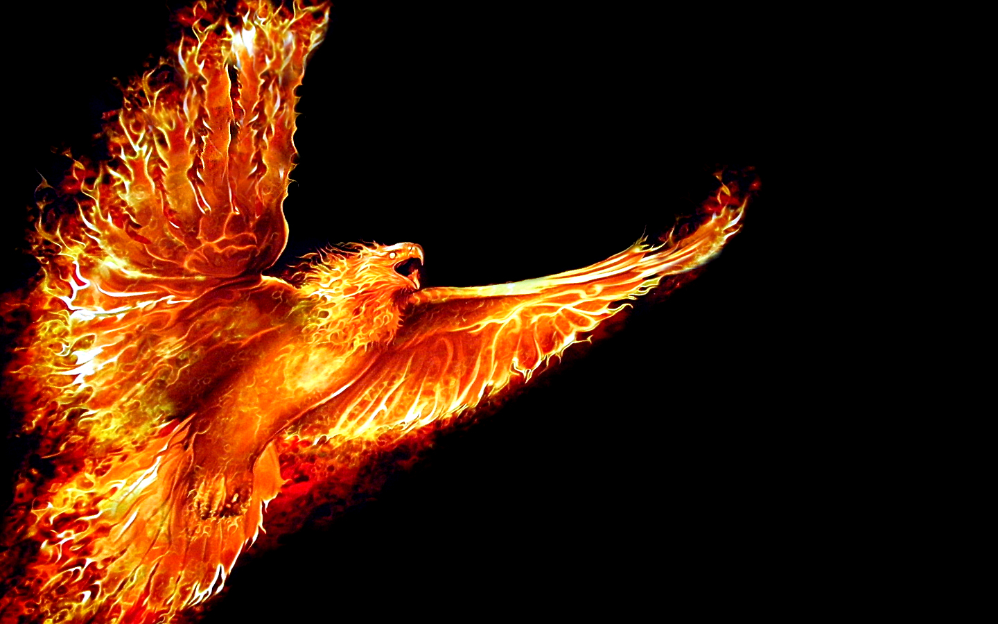 fire phoenix black background HD Wallpaper