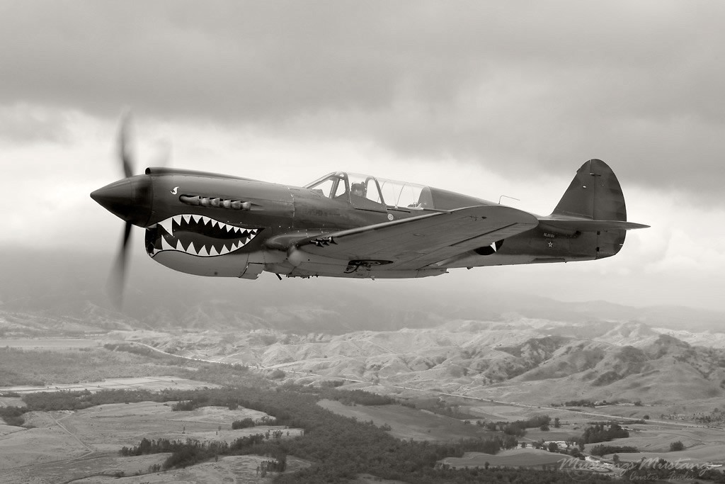 flight War vintage monochrome Curtiss P-40 HD Wallpaper