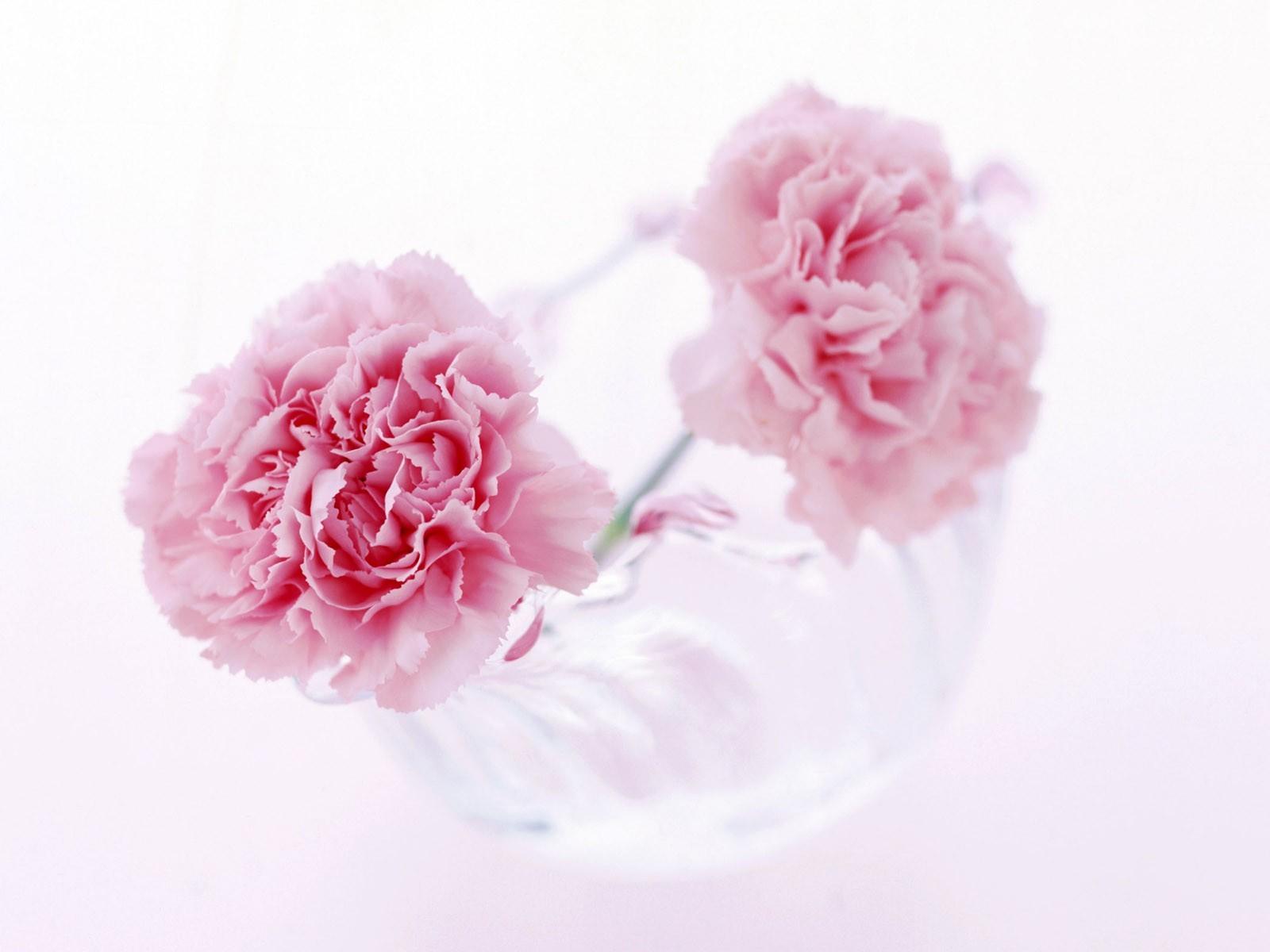 "\""Flowers"""
