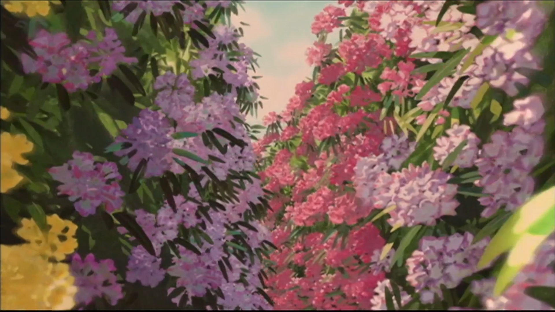 Flowers Spirited Away HD Wallpaper