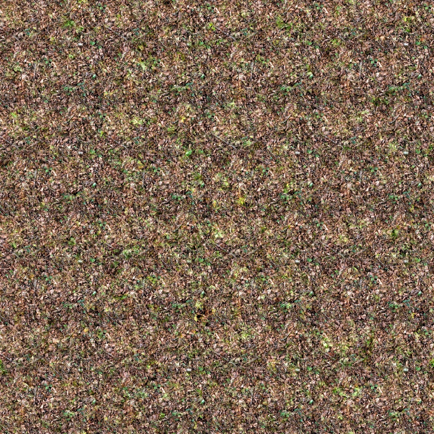 forests grass Textures stereogram HD Wallpaper