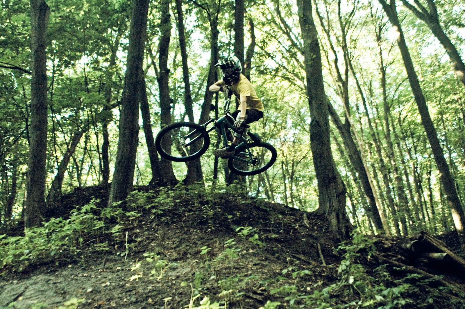 forests Ukraine extreme sports HD Wallpaper