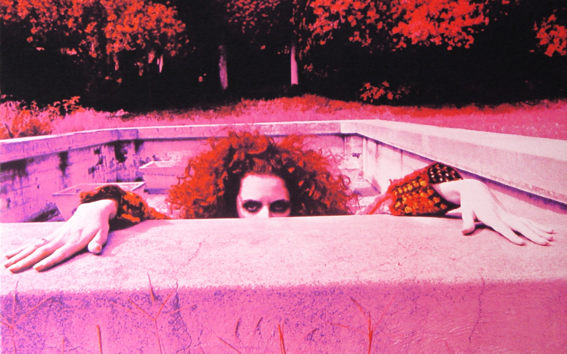 Frank Zappa swimming pools HD Wallpaper