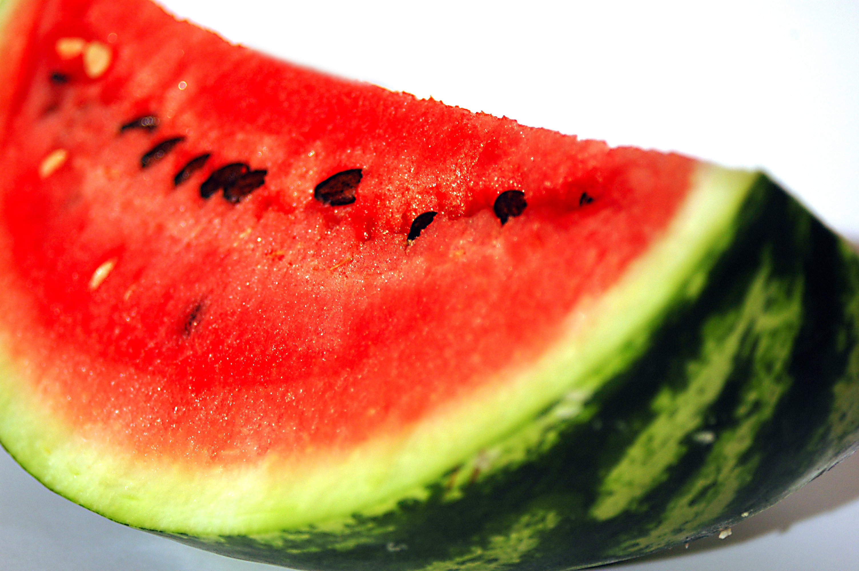 fruits watermelons white background