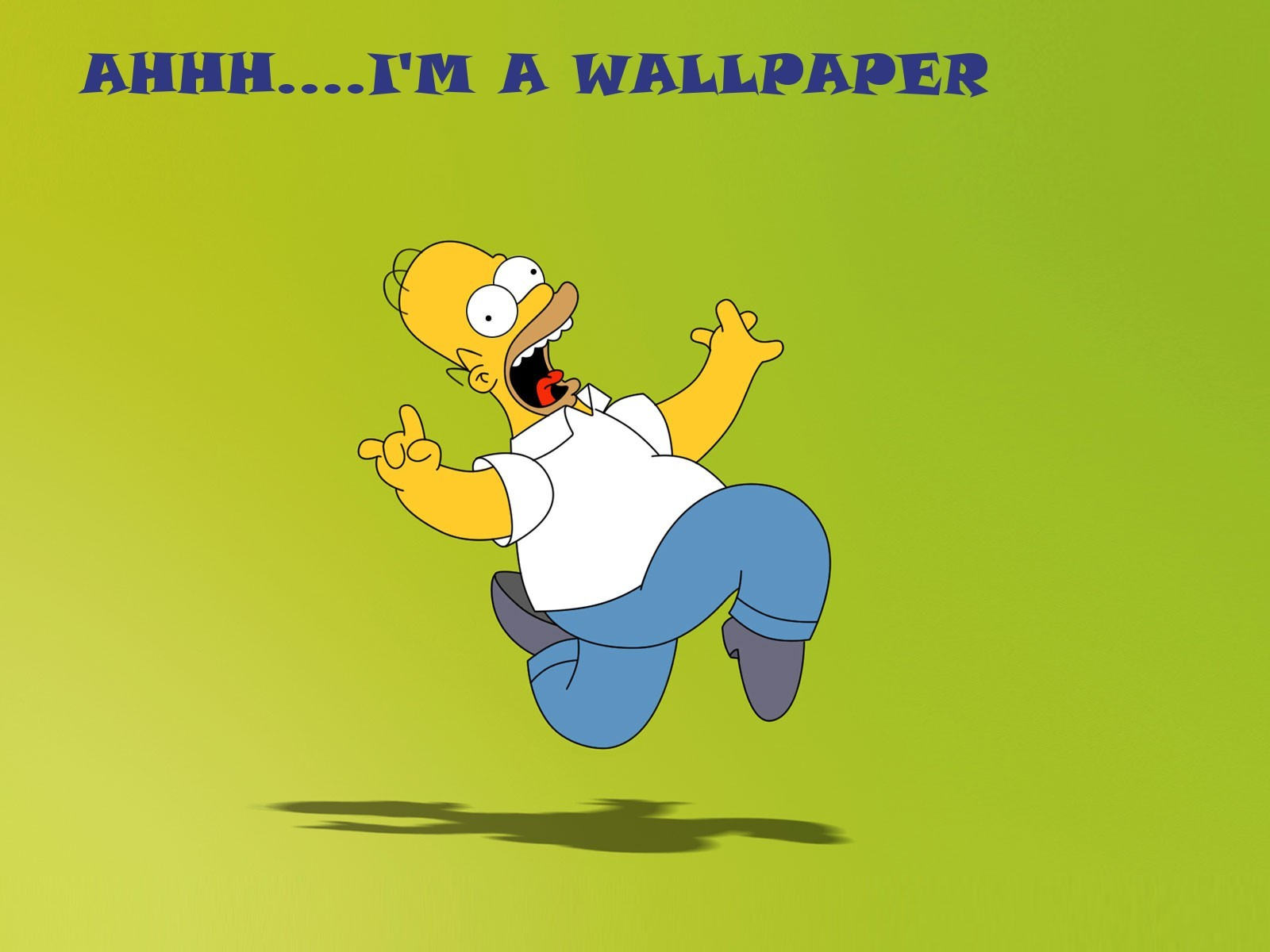 funny Homer Simpson The HD Wallpaper