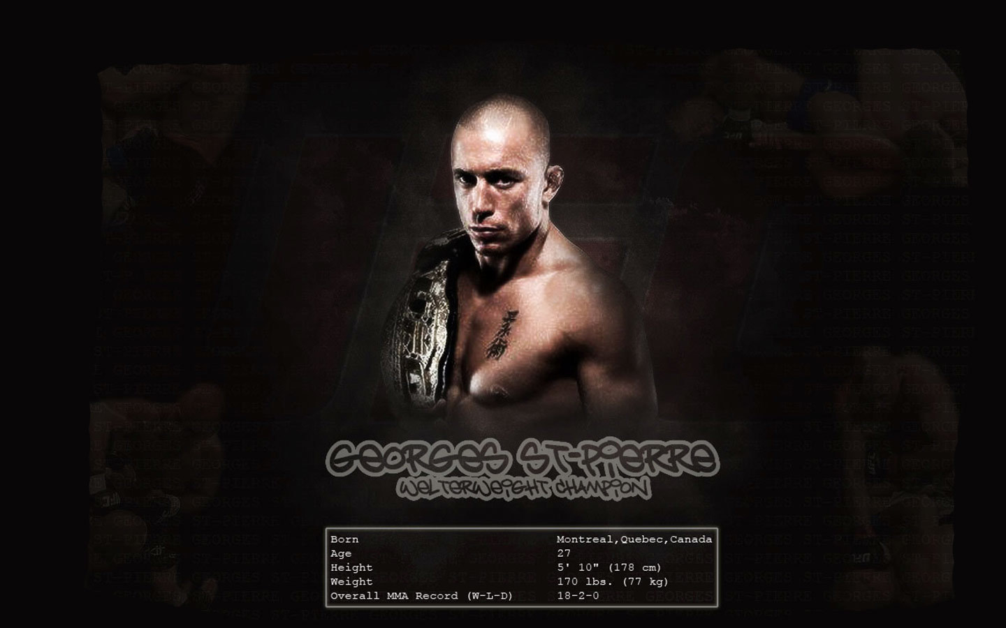 georges St pierre ufc HD Wallpaper