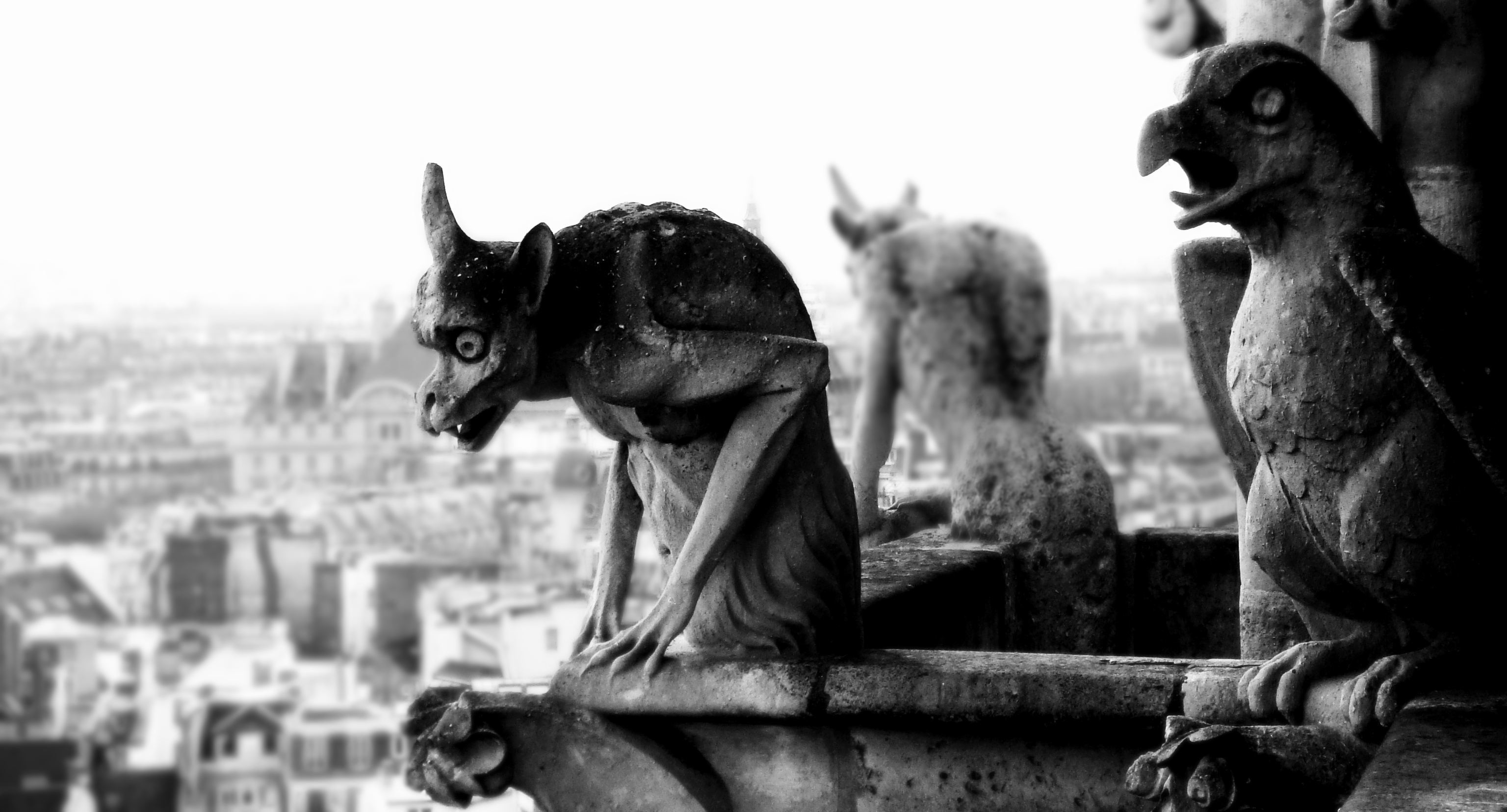 grayscale gargoyle statues monochrome HD Wallpaper