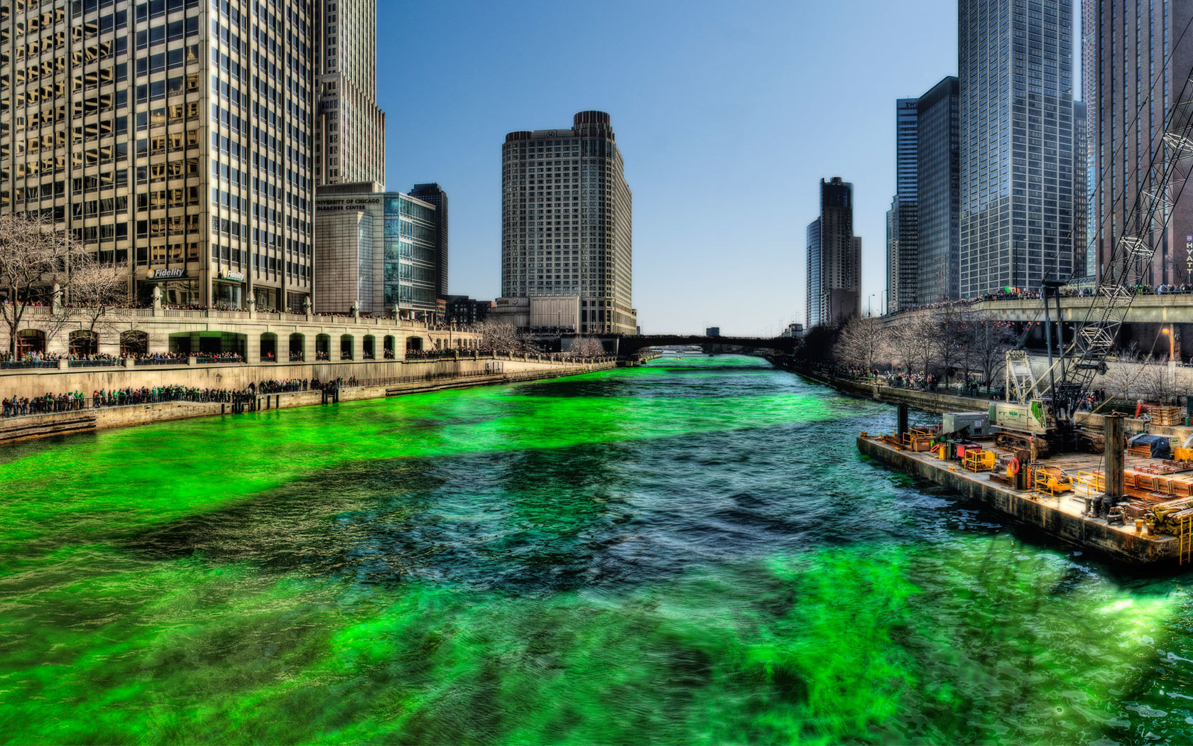 Green Chicago river on HD Wallpaper