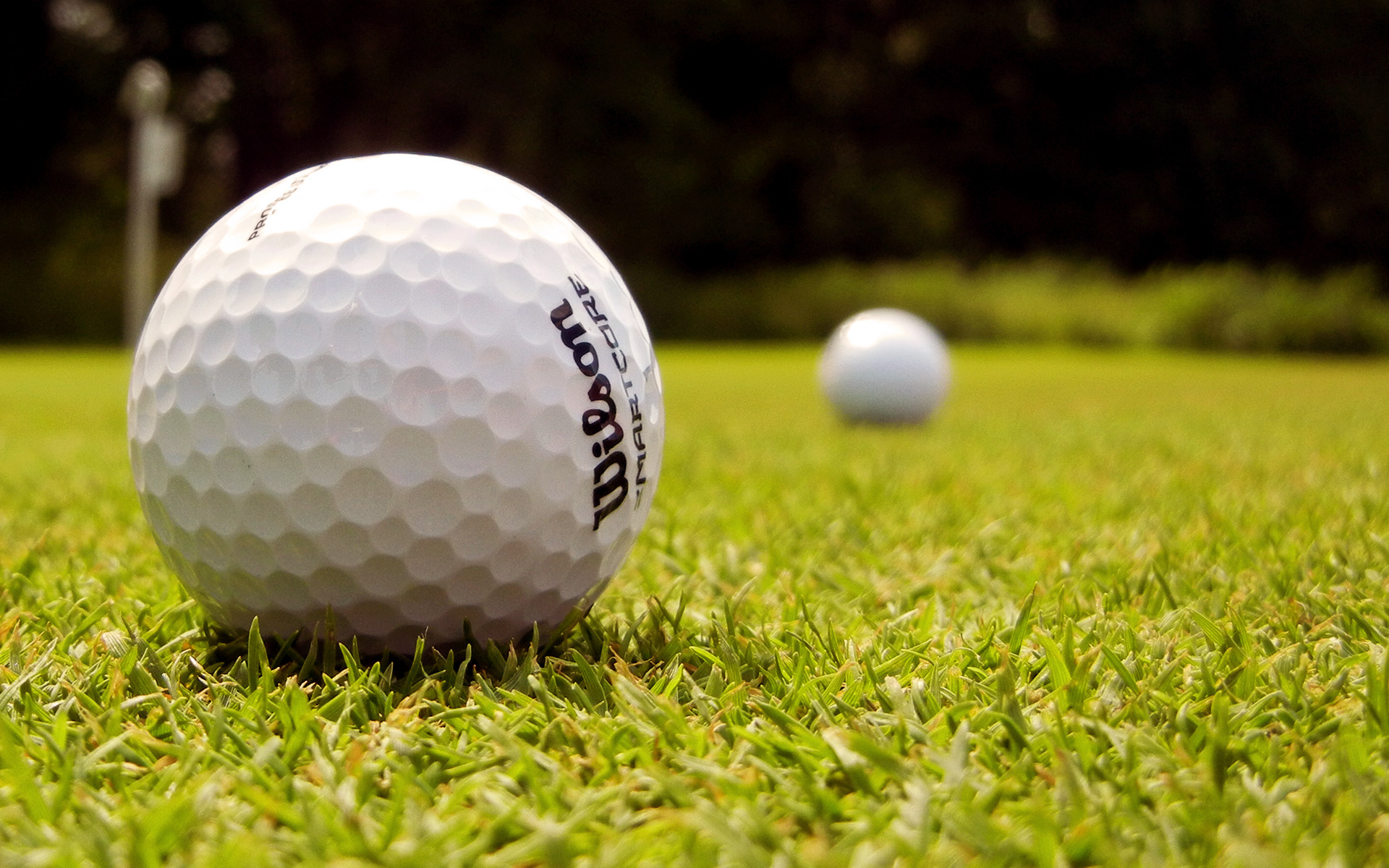 Green grass golf depth HD Wallpaper