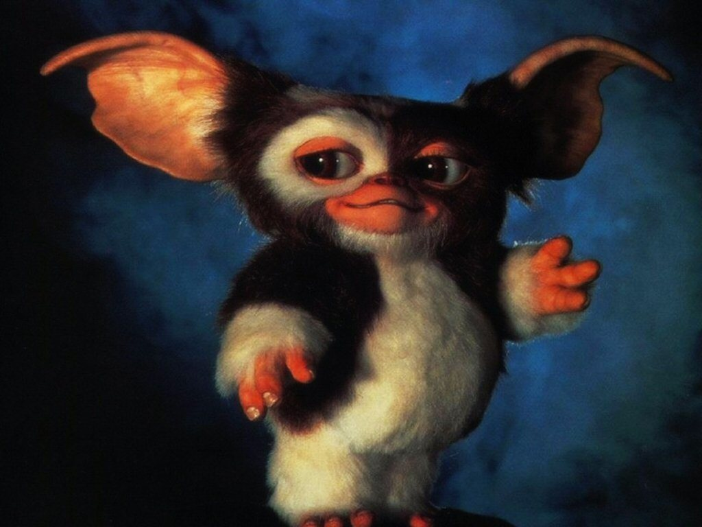 Gremlins gizmo Movie HD Wallpaper