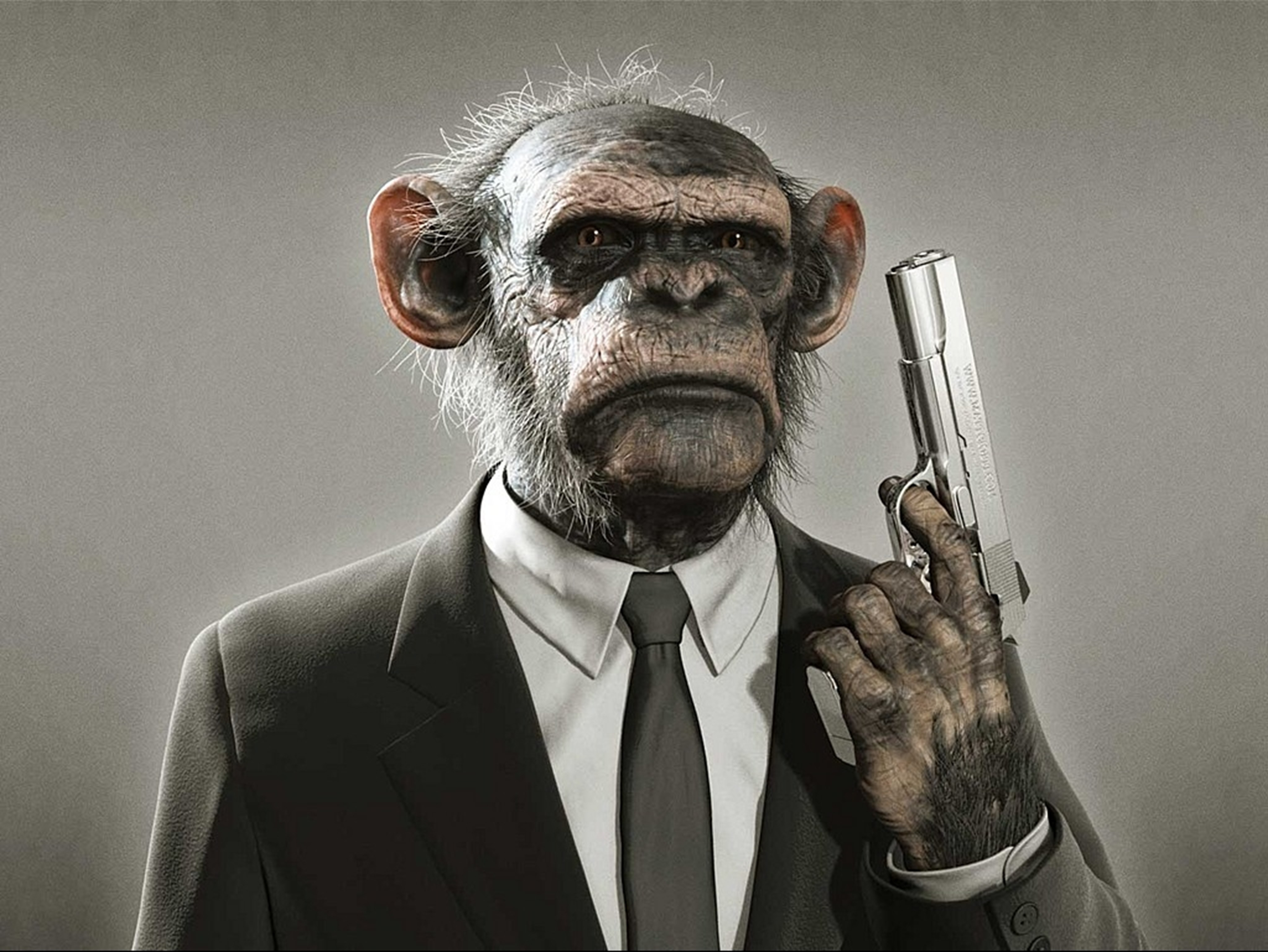 Guns suit apes monkeys HD Wallpaper