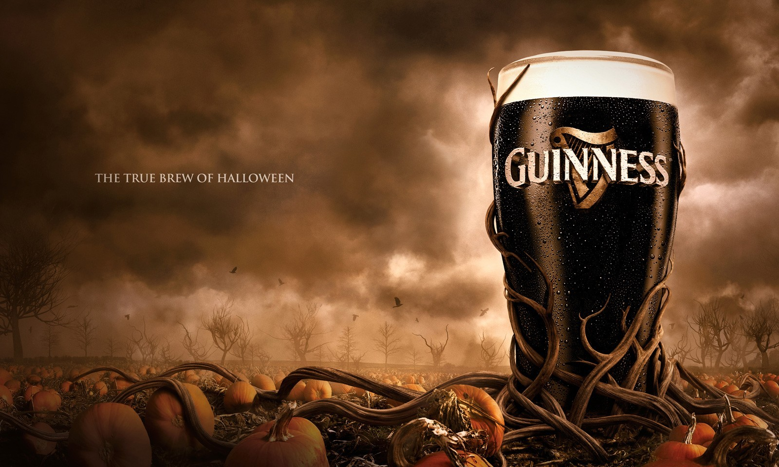 Halloween guinness brew true HD Wallpaper