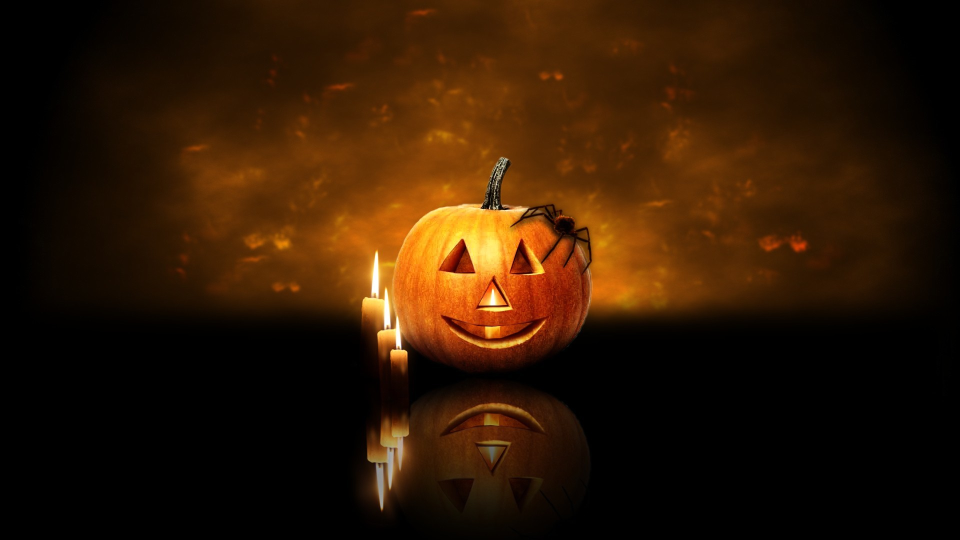 Halloween spiders pumpkins pumpkin HD Wallpaper