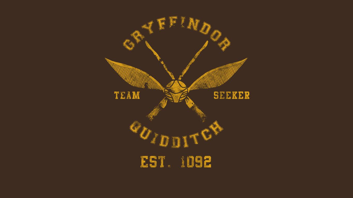 Harry Potter Quidditch Gryffindor