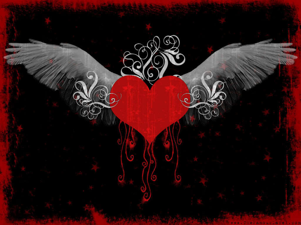 heart wings love