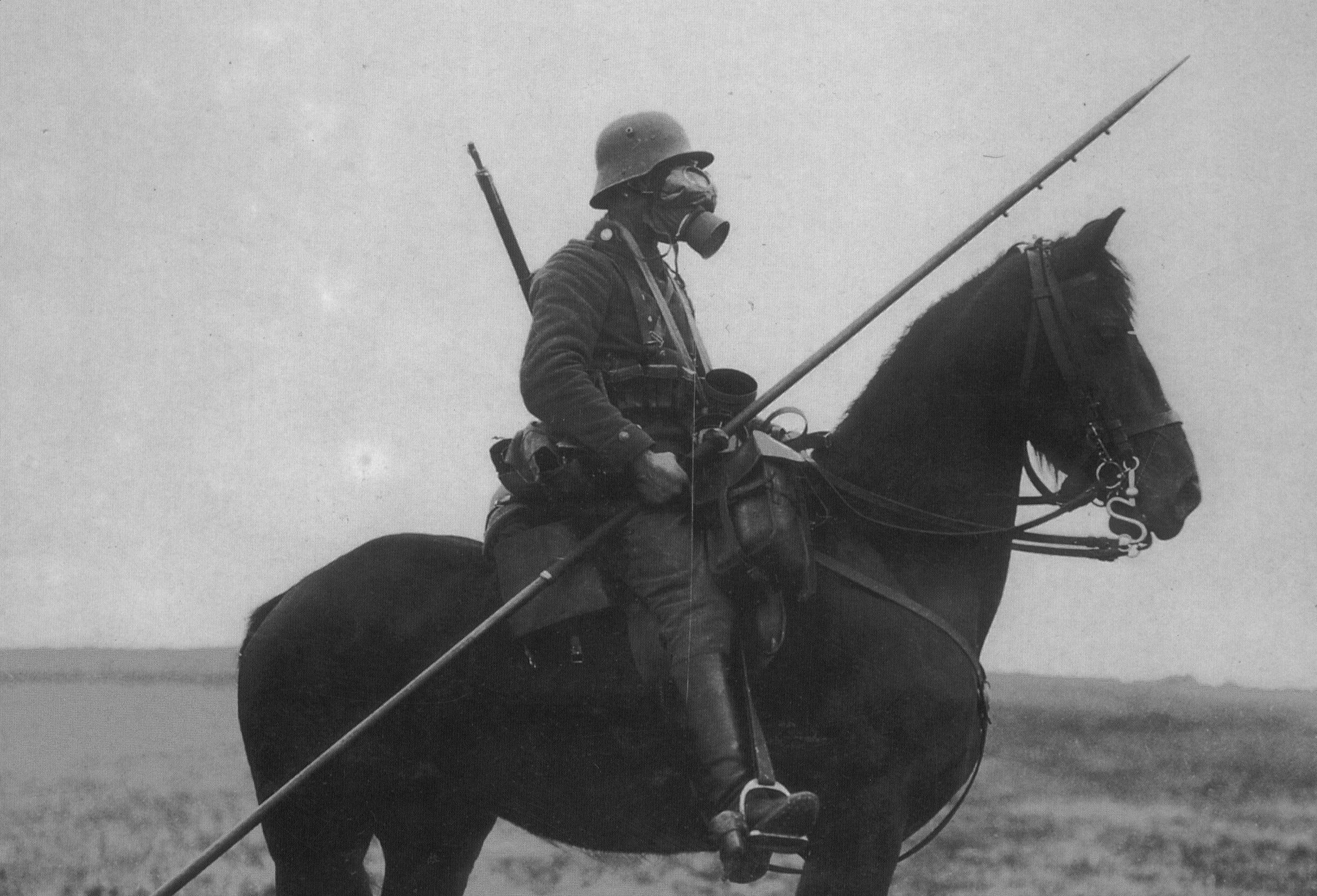 Horses world war i HD Wallpaper