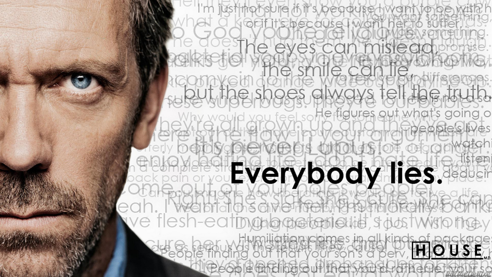 Hugh laurie Everybody lies HD Wallpaper