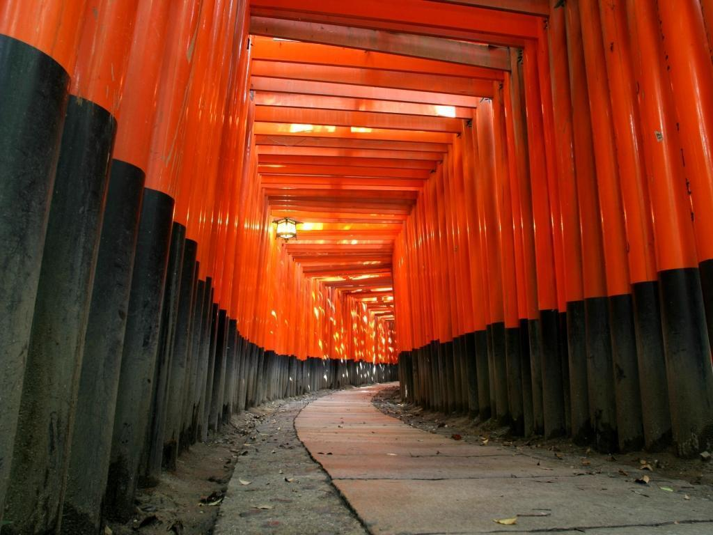 inari sum tradition Japan HD Wallpaper