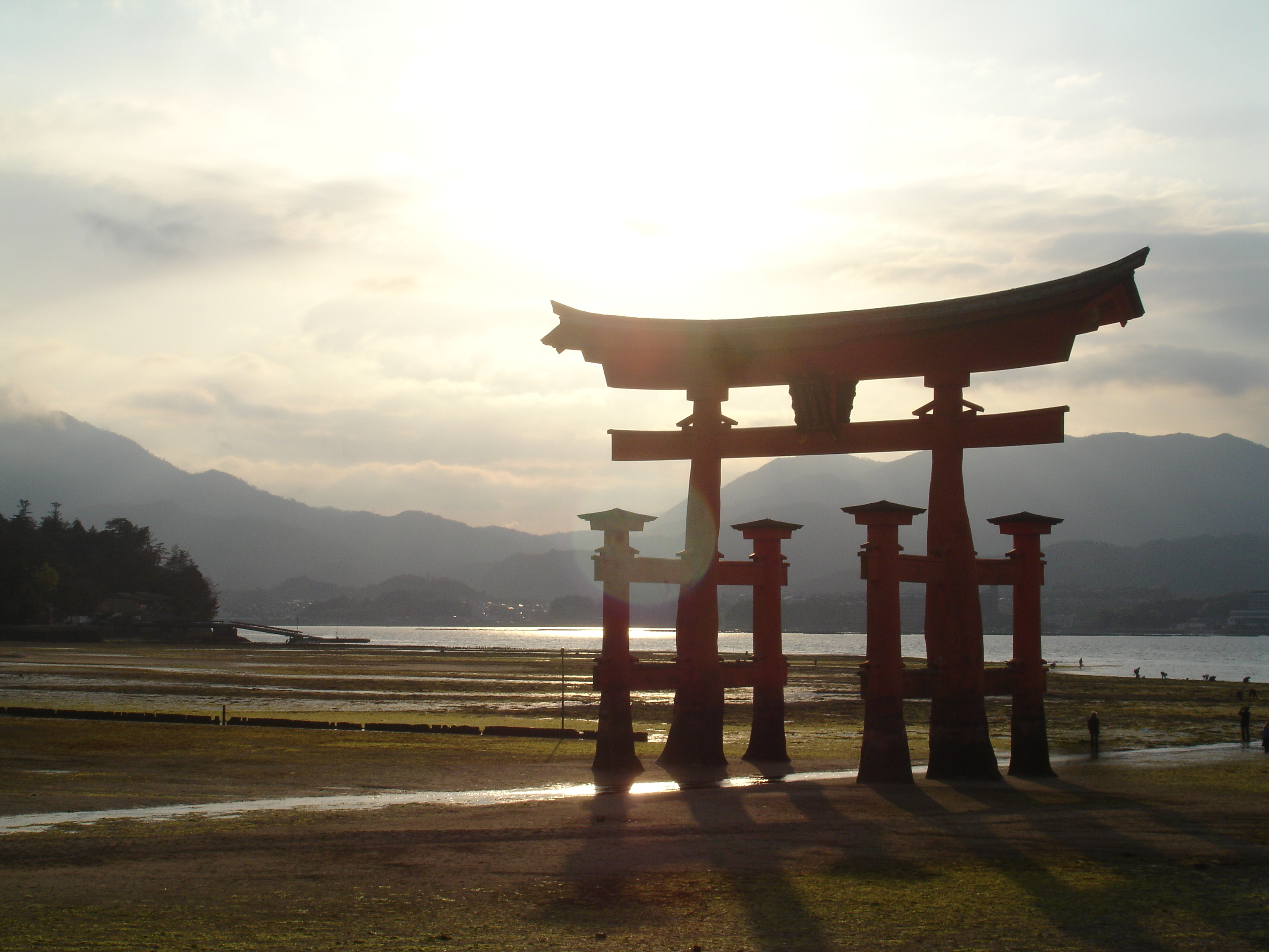 Japan shrine sunlight torii HD Wallpaper