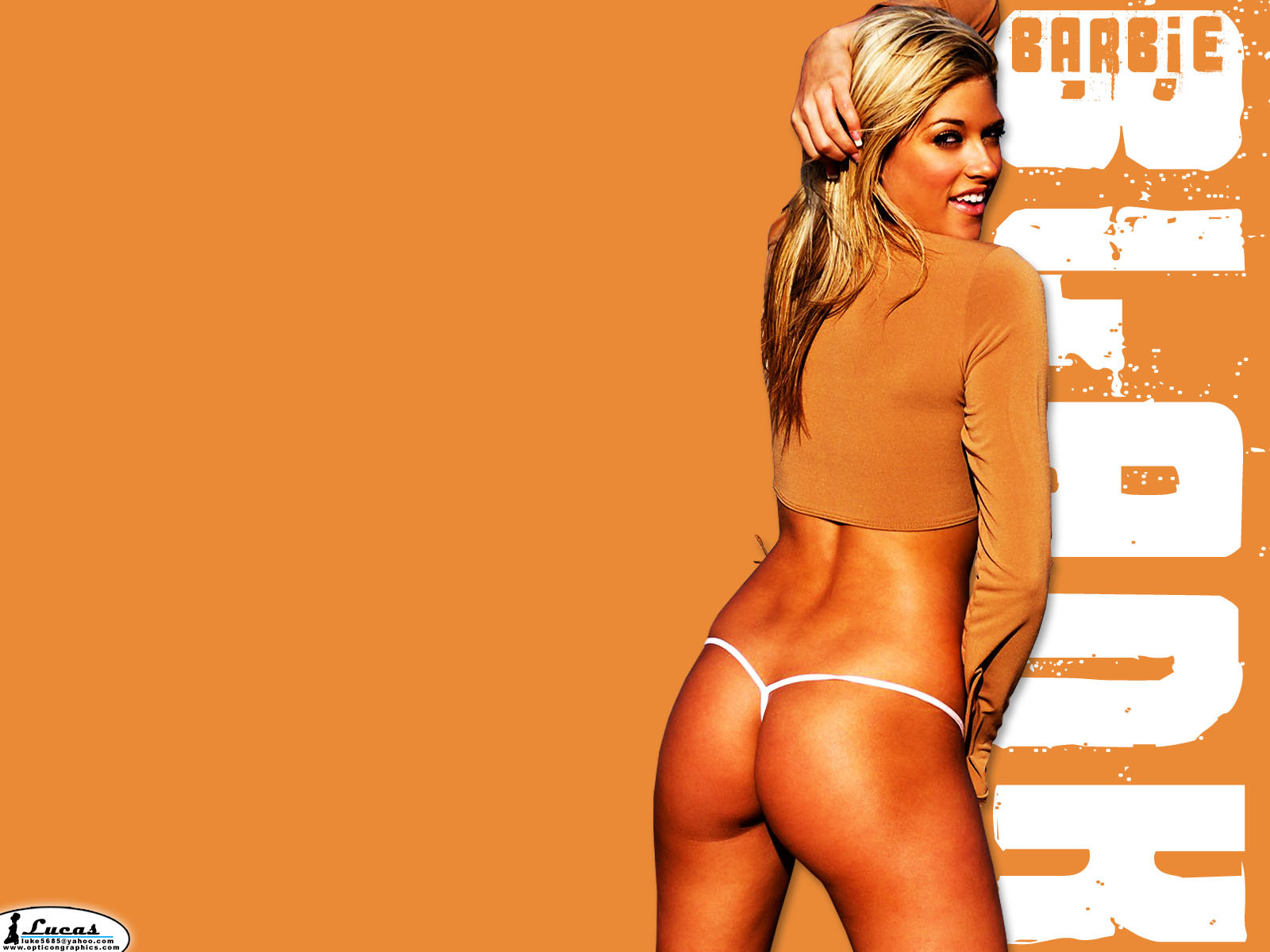 Kelly Kelly barbie Blank HD Wallpaper