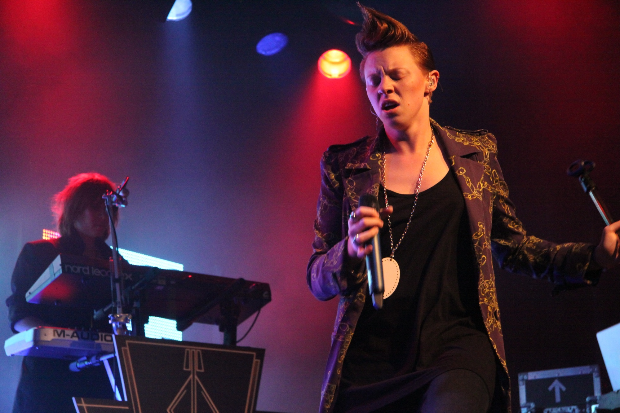 la roux concert photo HD Wallpaper
