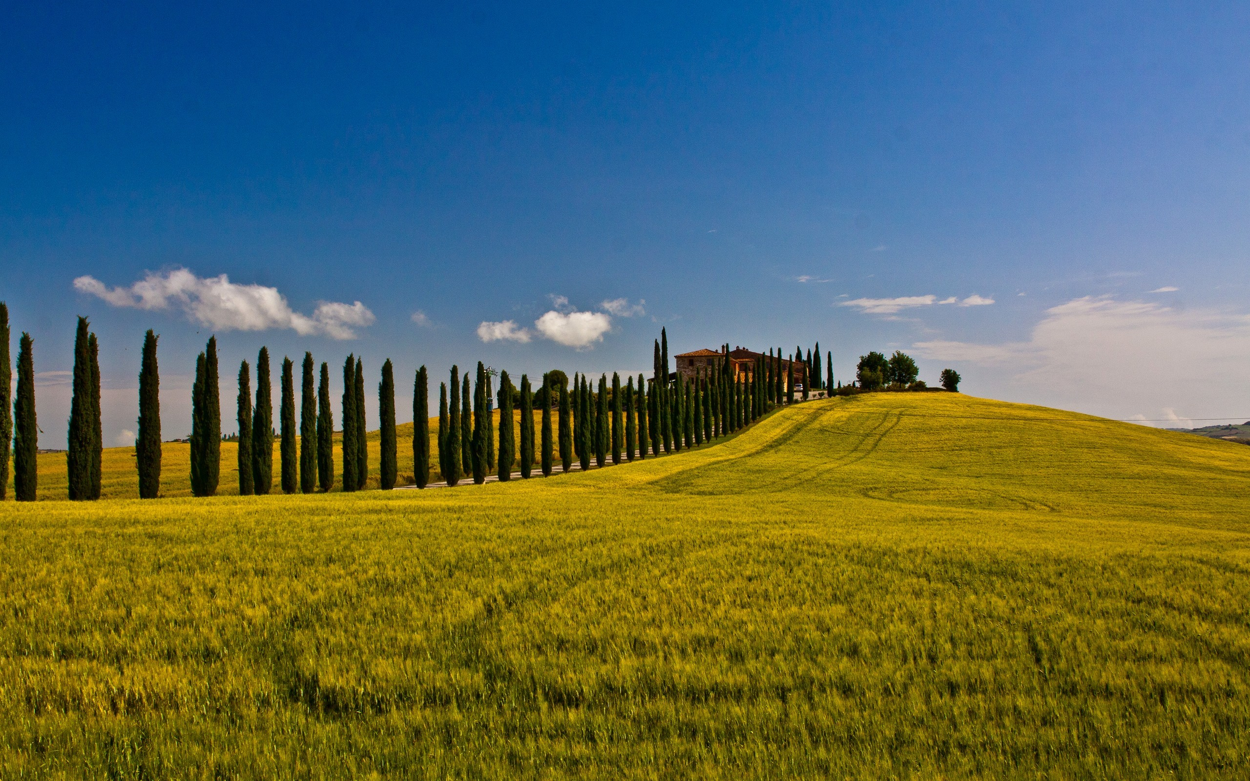 Landscapes nature fields Italy HD Wallpaper