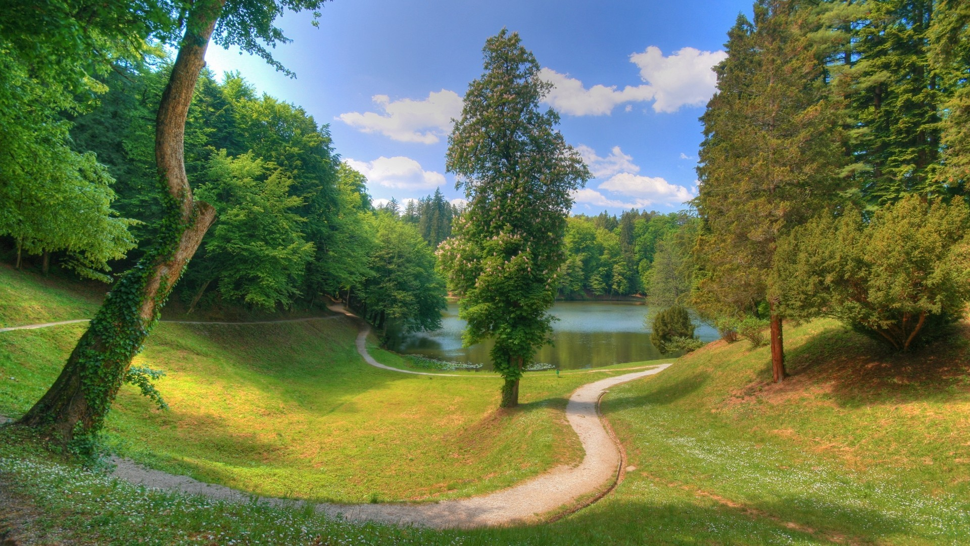 Landscapes nature Trees grass HD Wallpaper