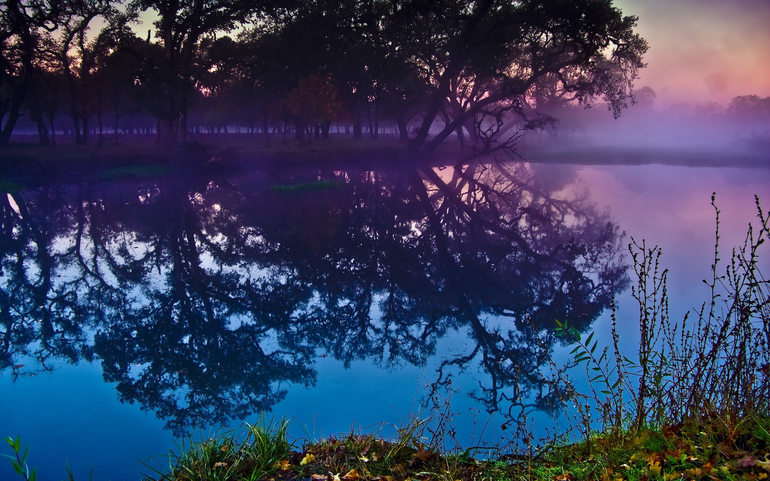 Landscapes Trees lakes reflections HD Wallpaper