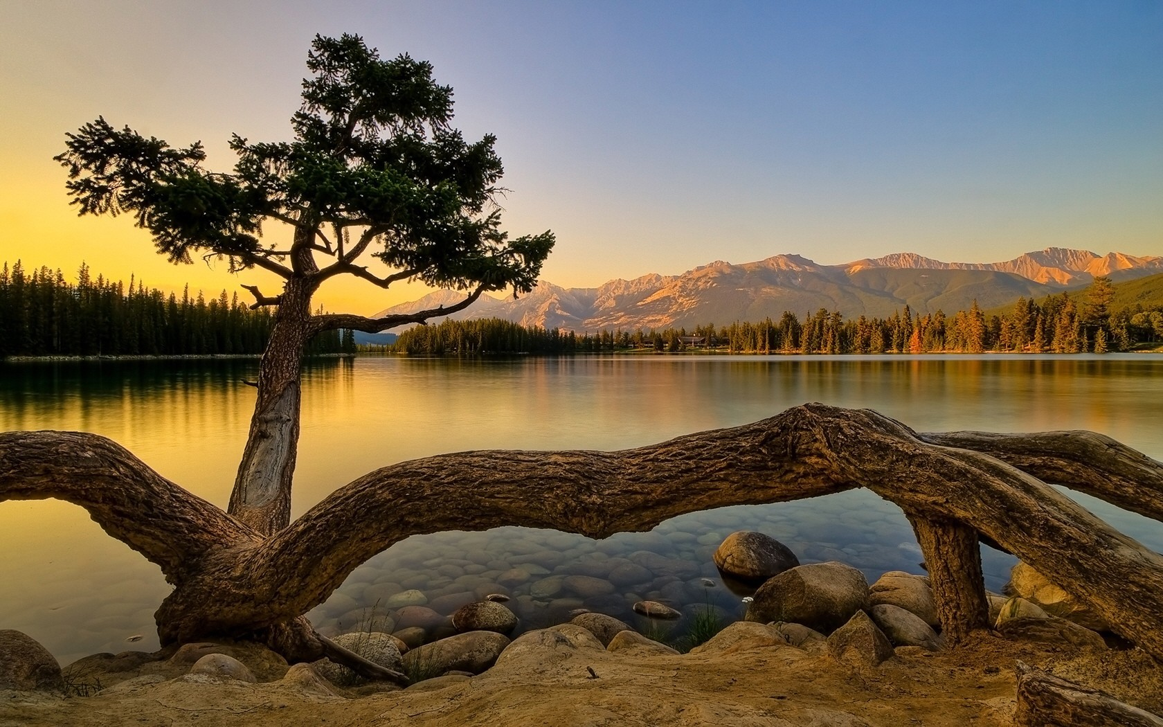 Landscapes Trees water Mountains HD Wallpaper