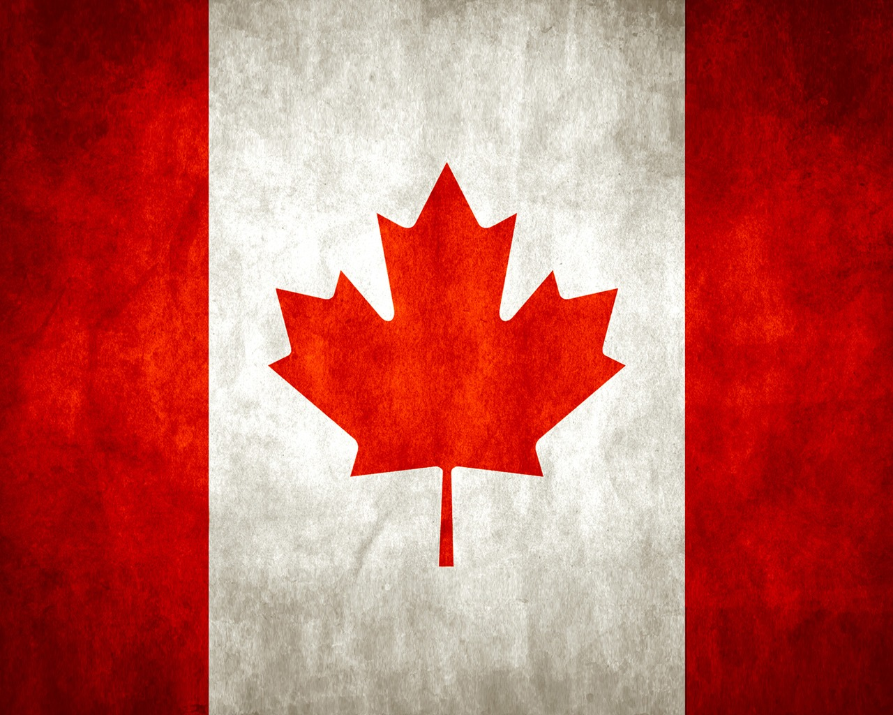 leaf red white Canada HD Wallpaper