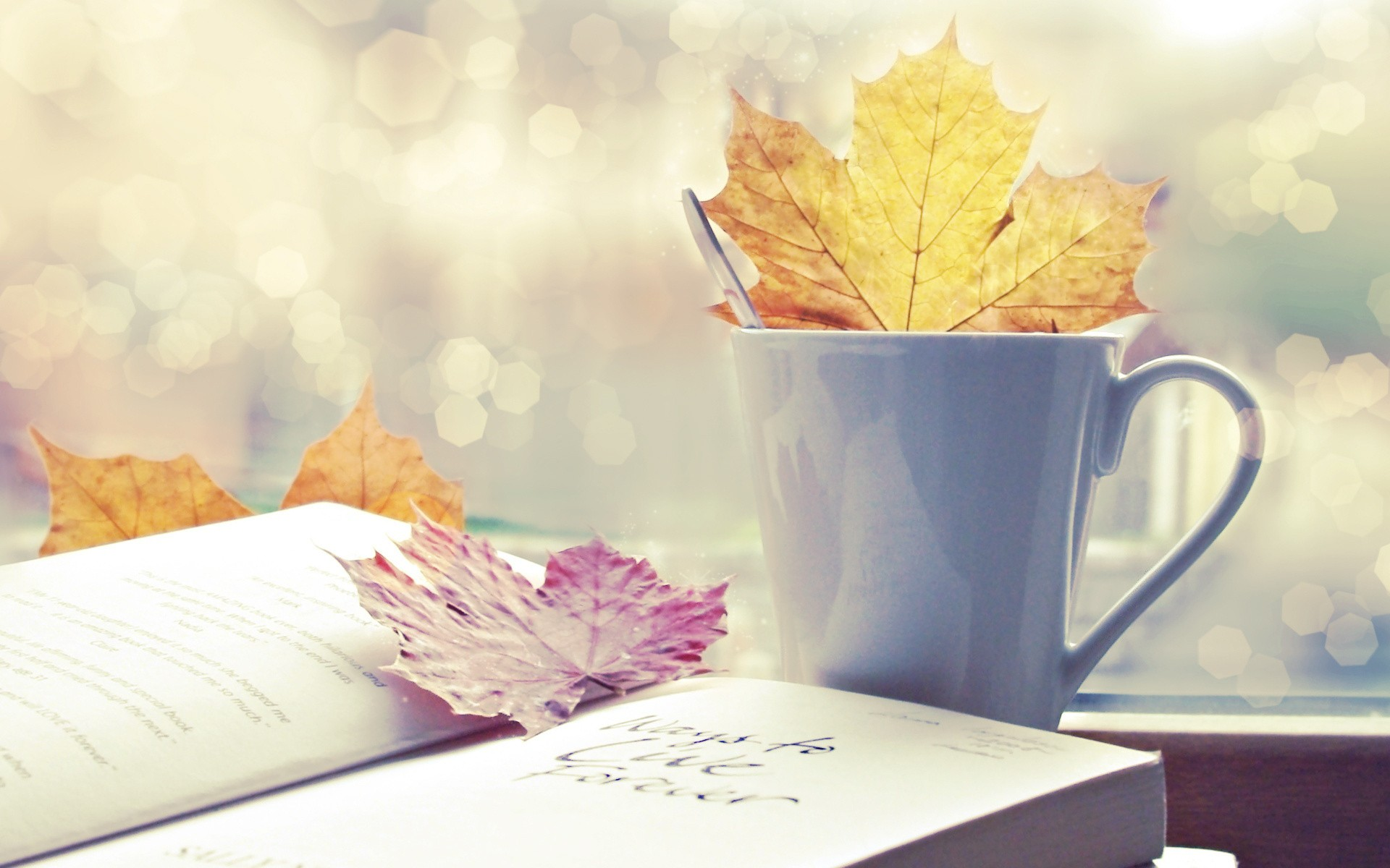 leaves cups Books HD Wallpaper