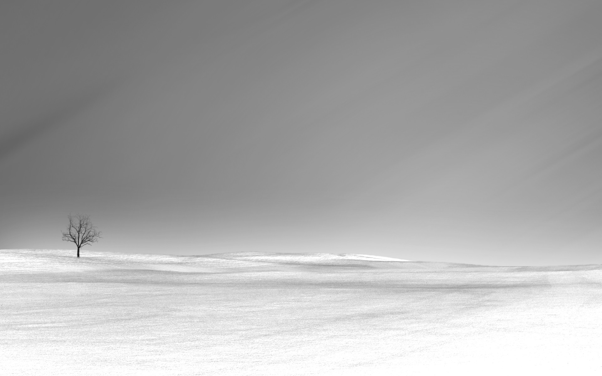 lonely minimalistic HD Wallpaper