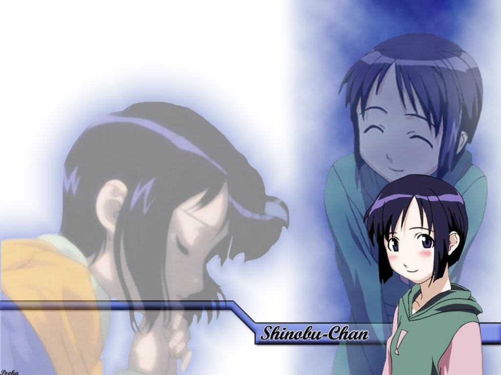love hina maehara shinobu HD Wallpaper
