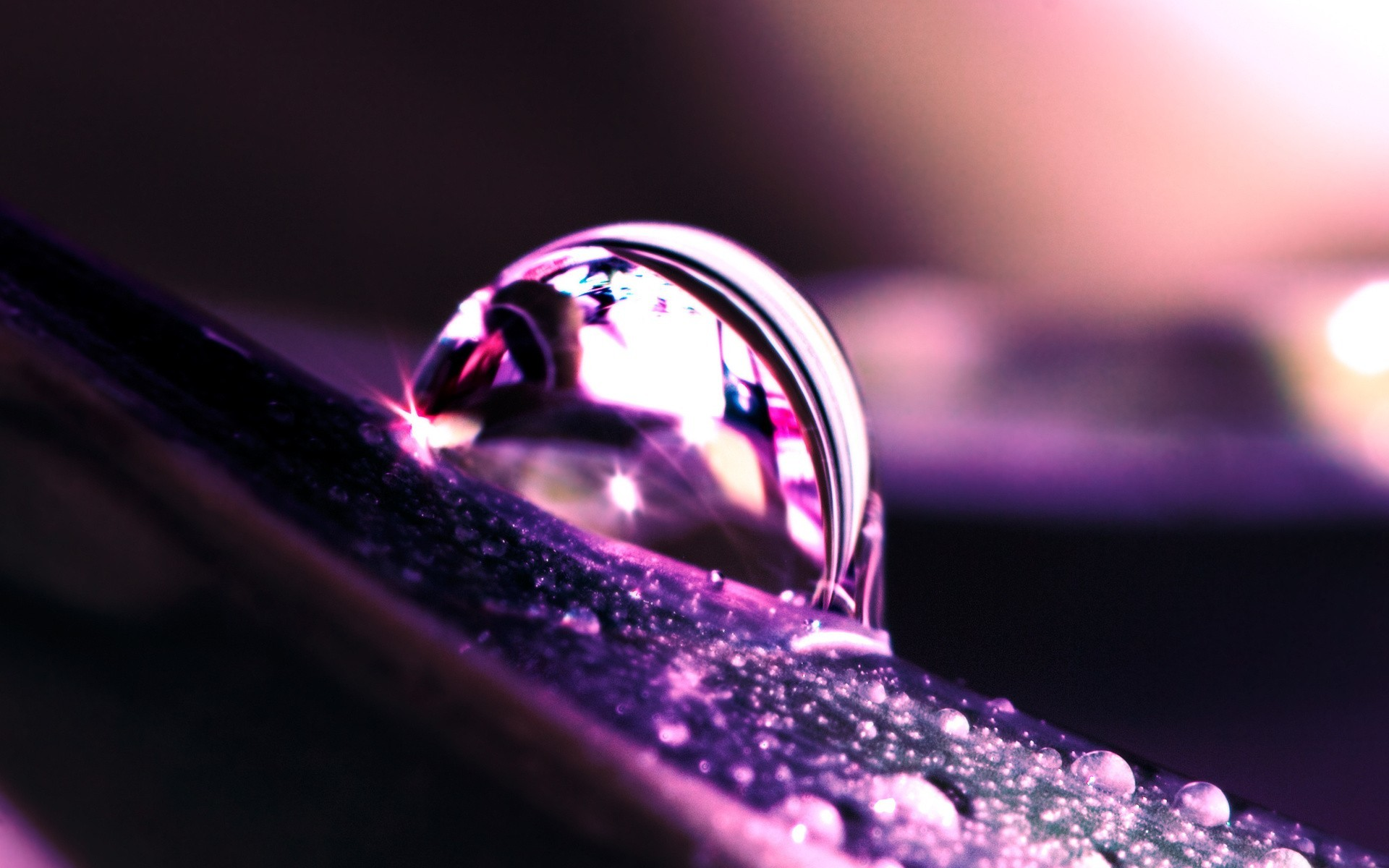macro water water drops HD Wallpaper