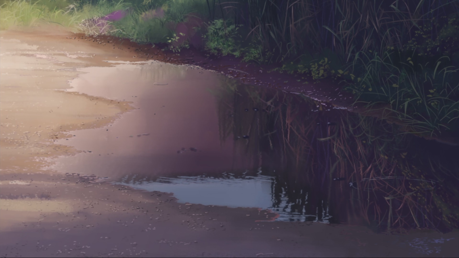 Makoto Shinkai 5 centimeters HD Wallpaper