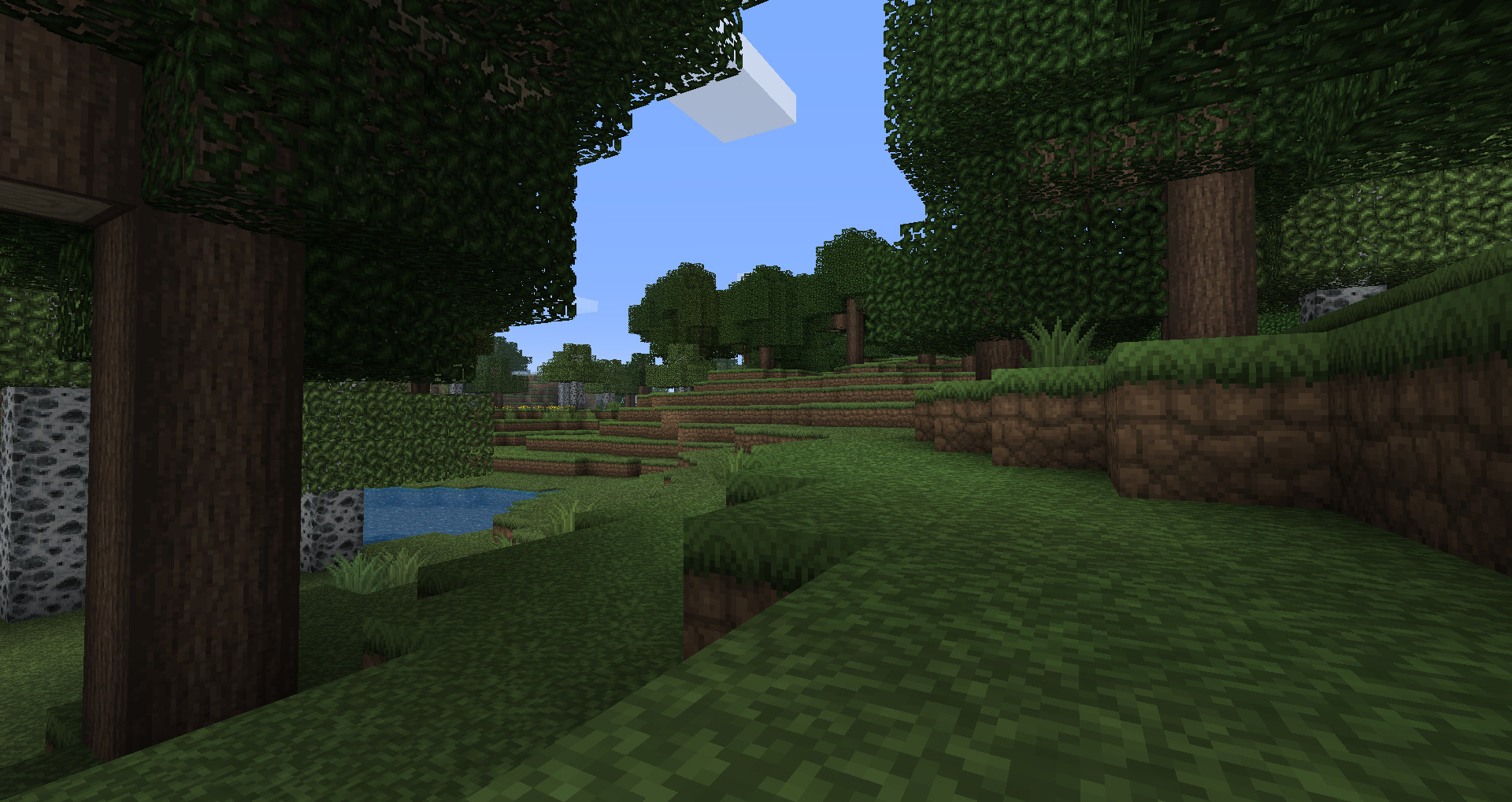 minecraft forests video Games HD Wallpaper