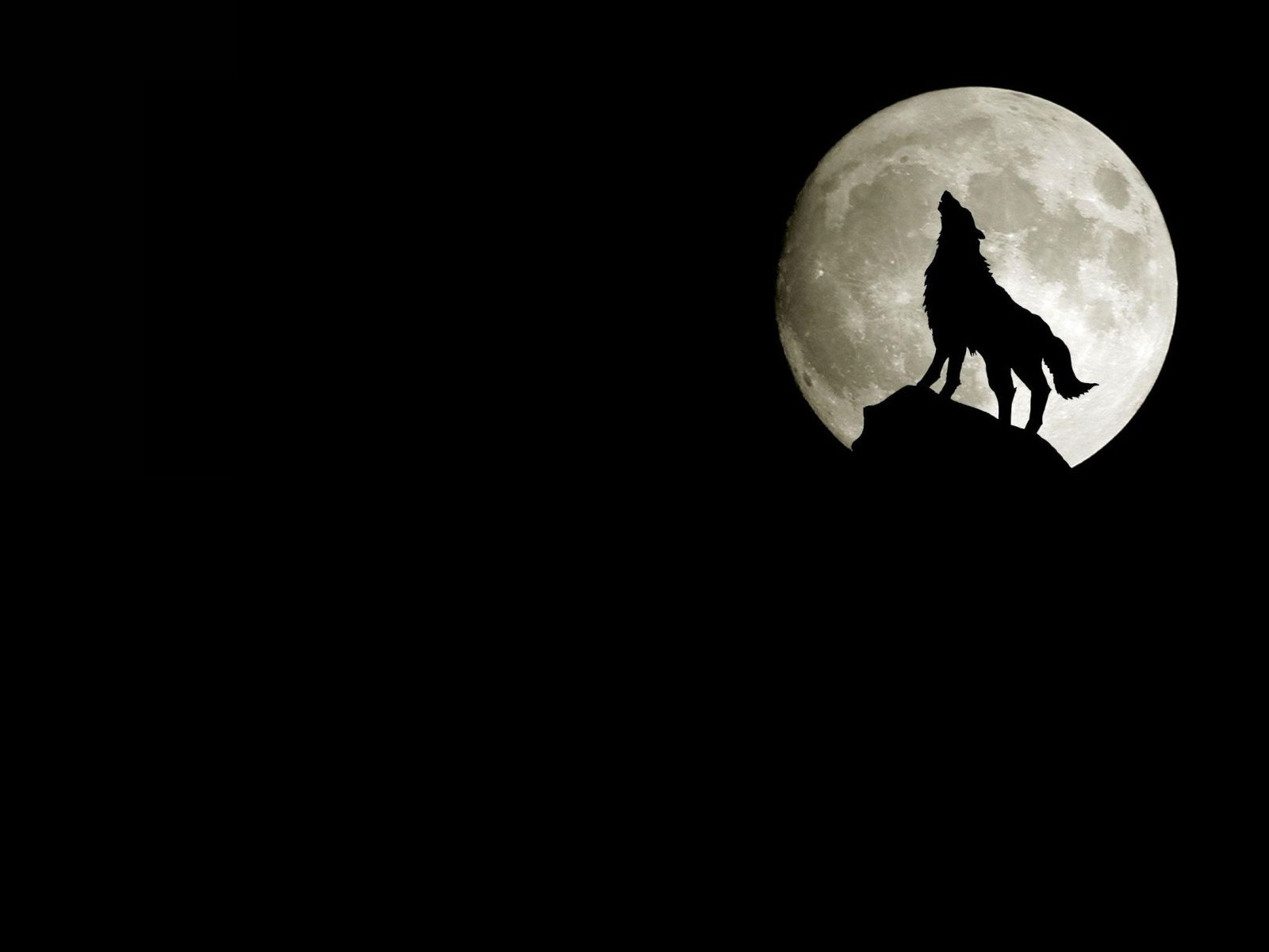 moon howling wolf Wolves HD Wallpaper