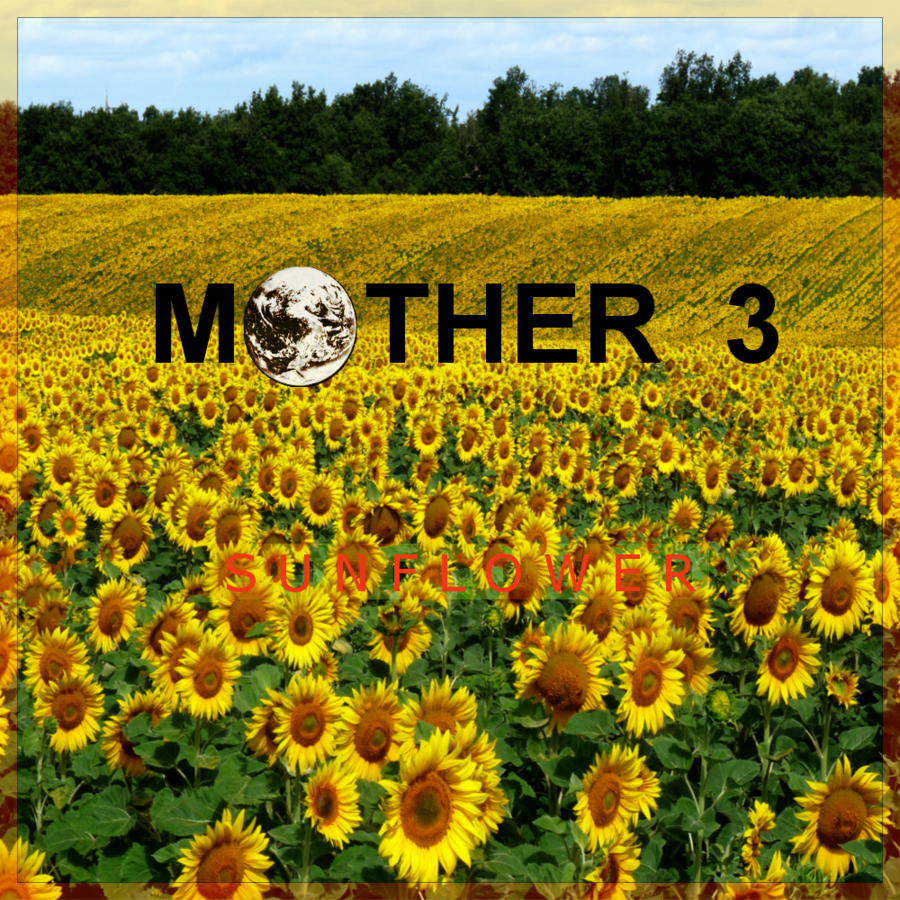mother sunflower field by