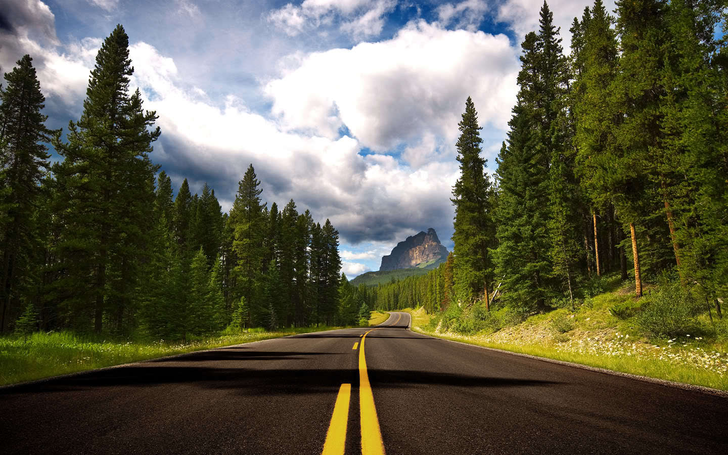 Mountains forest roads nature HD Wallpaper