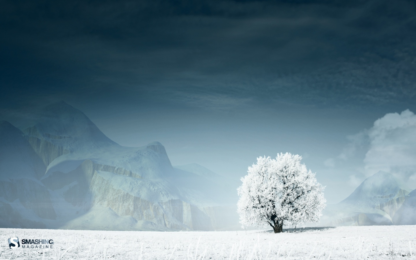 White Wallpaper on Lonely White Guardian Hd Wallpaper   General   874286