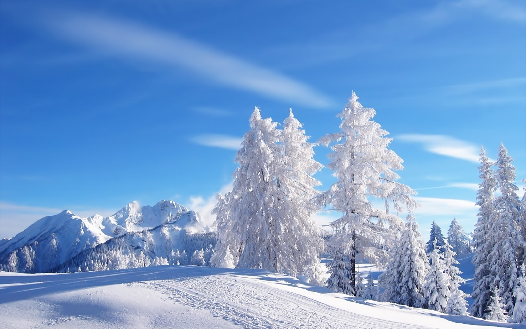 Mountains snow Trees blue