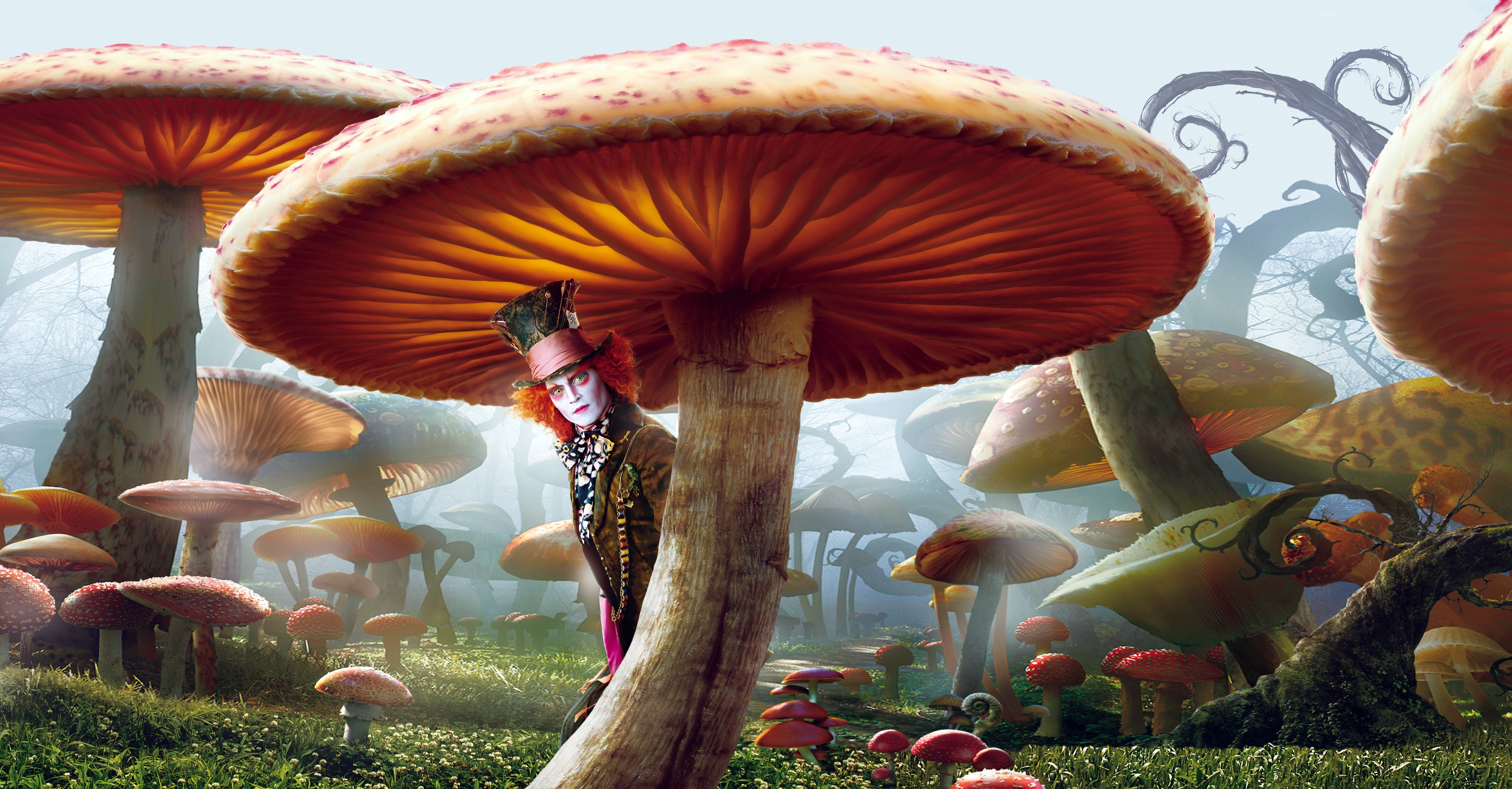 Movies Alice in Wonderland HD Wallpaper