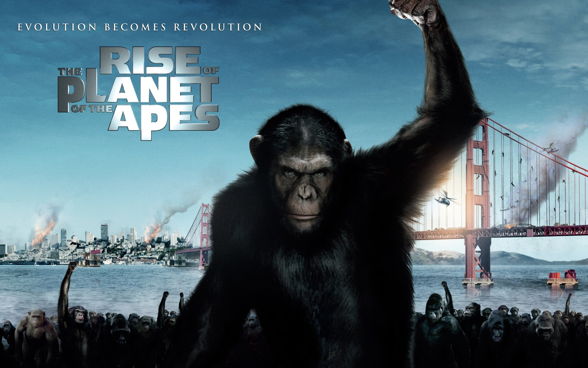 Movies Animals apes Rise HD Wallpaper