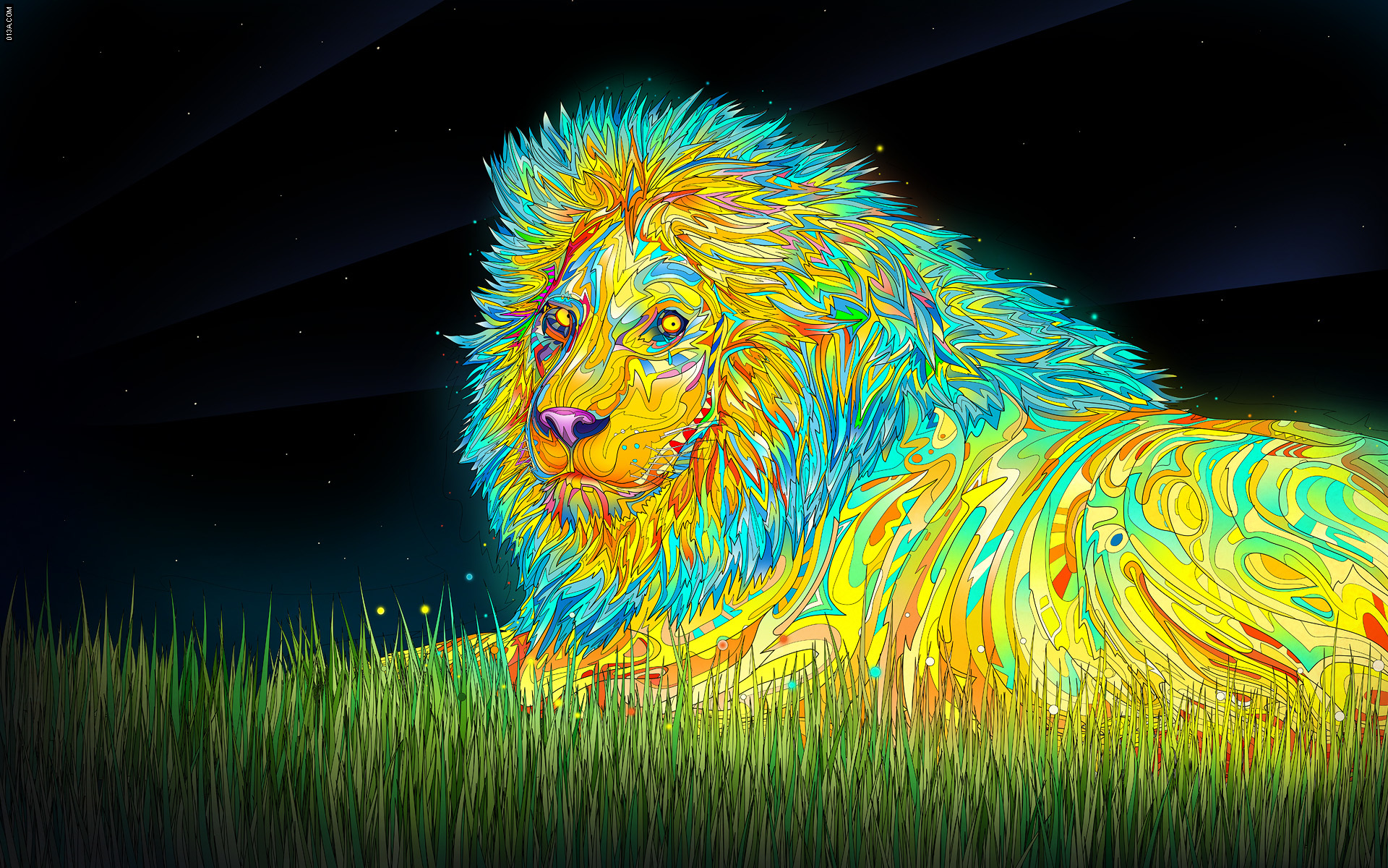 multicolor Animals grass Lions HD Wallpaper
