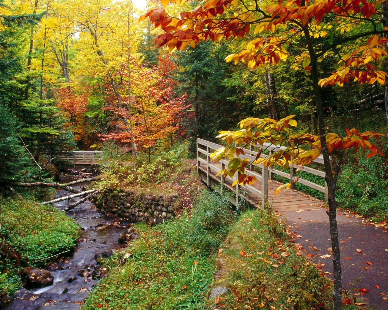 munising falls trail autumn HD Wallpaper